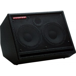 IBANEZ P-210 KC Promethean Cab 250Watt/2x10Zoll Bassbox