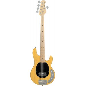 STERLING by Music Man RAY25CABSCM1 5-Saiter E-Bass, butterscotch